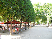 Tuileries Cafe, Paris