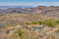 The scenic overlook at sotal vista  as it look out over this vast desert mountainous landscape.  You can see the Ross Maxwell Scenic Drive below