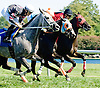 The Real Future winning at Delaware Park on 9/15/12
