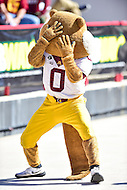 College Park, MD - OCT 15, 2016: Minnesota Golden Gophers mascot gets his head turned around backwards during game between Maryland and Minnesota at Capital One Field at Maryland Stadium in College Park, MD. (Photo by Phil Peters/Media Images International)