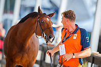 NED-Marc Houtzager presents Sterrehof's Calimero during the 2nd Horse Inspection for the FEI World Individual Jumping Championships. 2018 FEI World Equestrian Games Tryon. Saturday 22 September. Copyright Photo: Libby Law Photography