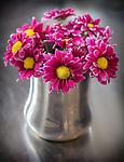 8.27.12 - Coffee & Flowers...