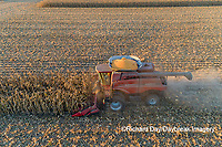 63801-12404 Harvesting corn in fall-aerial  Marion Co. IL