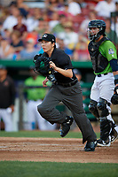 Umpire Emma Charlesworth-Seiler during a Midwest League game between the Dayton Dragons and Kane County Cougars on July 20, 2019 at Northwestern Medicine Field in Geneva, Illinois.  Dayton defeated Kane County 1-0.  (Mike Janes/Four Seam Images)