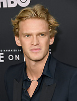 """05 June 2019 - Los Angeles, California - Cody Simpson. HBO's """"Ice on Fire"""" Los Angeles Premiere held at LACMA. <br /> CAP/ADM/BT<br /> ©BT/ADM/Capital Pictures"""
