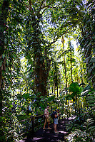 Visitors on a pathway, one taking photos using a tripod, amidst tropical foliage at Hawai'i Tropical Botanical Garden, Big Island of Hawaiʻi.