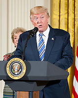 United States President Donald J. Trump makes remarks at an event with small businesses in the East Room of the White House in Washington, DC on Tuesday, August 1, 2017. Photo Credit: Ron Sachs/CNP/AdMedia