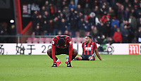 29th February 2020; Vitality Stadium, Bournemouth, Dorset, England; English Premier League Football, Bournemouth Athletic versus Chelsea; Bournemouth players off their feet after the final whistle and a 2-2 draw