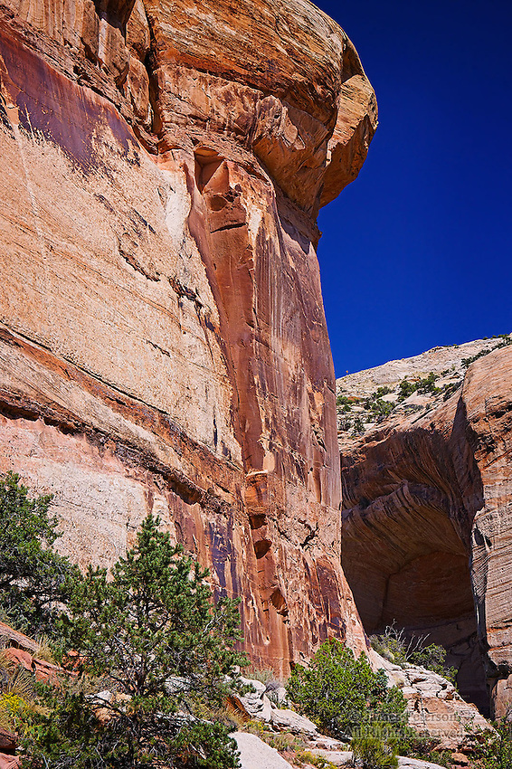 Sandstone Walls, Calf Creek Canyon, Utah