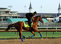 05-14-18 Preakness Contenders at Churchill