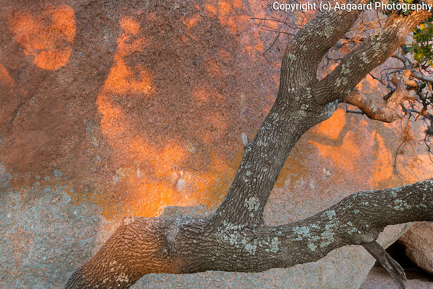 Sunset Abstract, Enchanted Rock State Natural Area