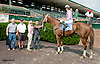 Stevia winning at Delaware Park on 9/11/13