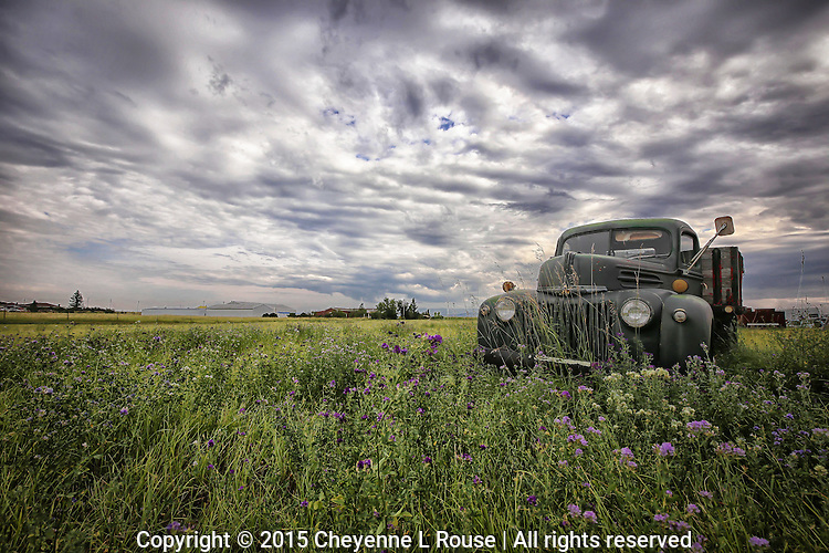 Alfalfa Flatbed Ford - Montana (lower POV)