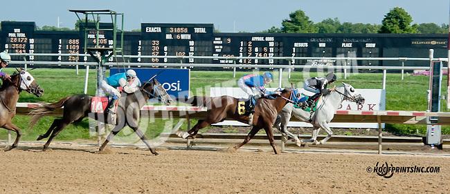 Aim Hi winning at Delaware Park on 8/21/13