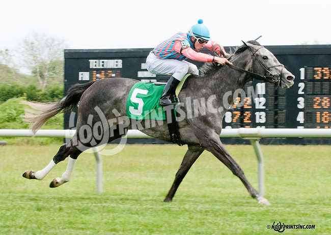 Farce winning at Delaware Park on 5/27/13.