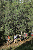 Photo story of Philmont Scout Ranch in Cimarron, New Mexico, taken during a Boy Scout Troop backpack trip in the summer of 2013. Photo is part of a comprehensive picture package which shows in-depth photography of a BSA Ventures crew on a trek.  In this photo BSA Venture Crew Scouts make their way along a trail in the backcountry at Philmont Scout Ranch.   <br /> <br /> The  Photo by travel photograph: PatrickschneiderPhoto.com