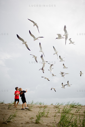Tate and Anakyn Quina of Homa, LA, feed terns on the beach in Grand Isle.  The beachhead was one of the first areas impacted by the Deepwater Horizon oil spill.  Tar balls continue to wash up daily...Photographs from Grand Isle and surrounding areas impacted by the Deepwater Horizon Oil Spill.  The spill is estimated to be gushing 35,000 to 60,000 barells of oil into the ocean per day.  Difficulties installing monitoring devices at the source have made this number difficult to clearly ascertain.  The spill is among the world's worst.