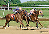 I'm Steppin' It Up winning The Carl Hanford Memorial Stakes at Delaware Park racetrack on 7/5/14