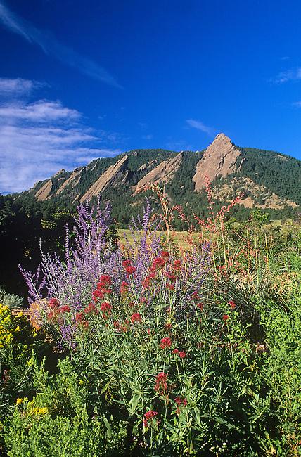 Garden, Chautauqua Park, Flatirons, Boulder, Colorado