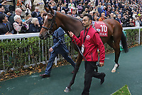 October 07, 2018, Longchamp, FRANCE - Enable (No. 10) in the Parade Ring before the Qatar Prix de l'Arc de Triomphe (Gr. I) at  ParisLongchamp Race Course  [Copyright (c) Sandra Scherning/Eclipse Sportswire)]