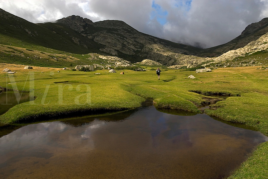 Corsica. Walker on the Pozzis, peat bog, near the Col de Verde. Fium'Orbo. France..