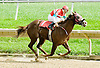 Josiethehomemaker winning at Delaware Park  on 10/1/11