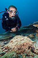 tasseled wobbegong, Eucrossorhinus dasypogon, and woman scuba diver, Triton Bay, West Papua, Indonesia, Pacific Ocean