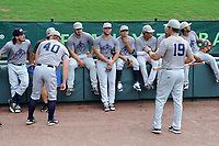 Left fielder Tim Tebow (15) of the Columbia Fireflies, center, listens to manager Jose Leger (19) before a game against the Greenville Drive on Tuesday, June 13, 2017, at Fluor Field at the West End in Greenville, South Carolina. Greenville won, 5-4. (Tom Priddy/Four Seam Images)