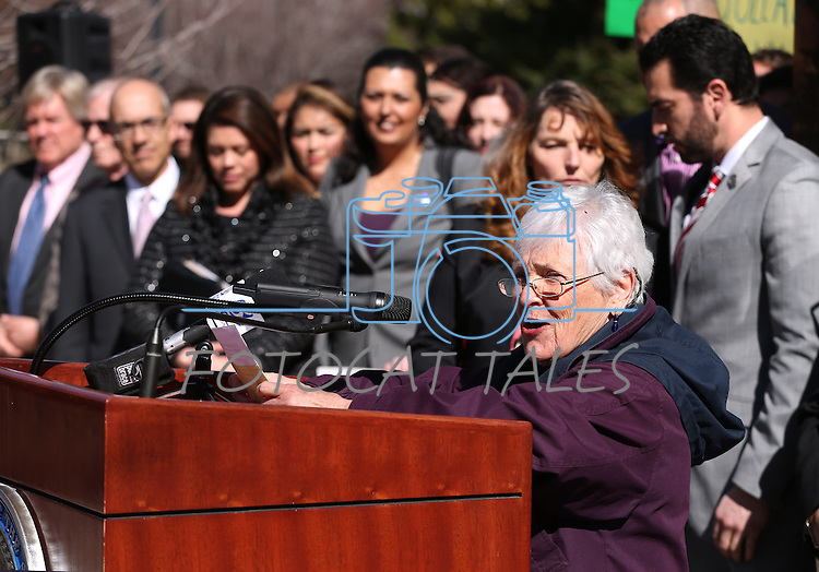 Lobbyist Bobbie Gang speaks at a press conference at the Legislative Building in Carson City, Nev., on Monday, Feb. 23, 2015. <br /> Photo by Cathleen Allison