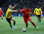 Watford's Nordin Amrabat tussles with Liverpool's Divock Origi during the Premier League match at Vicarage Road Stadium, London. Picture date: May 1st, 2017. Pic credit should read: David Klein/Sportimage