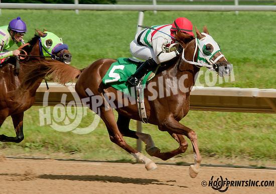 Brute winning at Delaware Park on 7/4/13