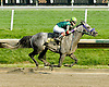 Theoretically winning The Bob Magness Memorial Derby (Gr. 2) at Delaware Park on 5/30/09