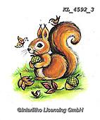 CUTE ANIMALS, LUSTIGE TIERE, ANIMALITOS DIVERTIDOS, paintings+++++,KL4592/3,#ac#, EVERYDAY ,sticker,stickers ,autumn,harvest