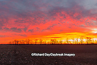 63893-03009 Sunrise over field,  Marion County, IL