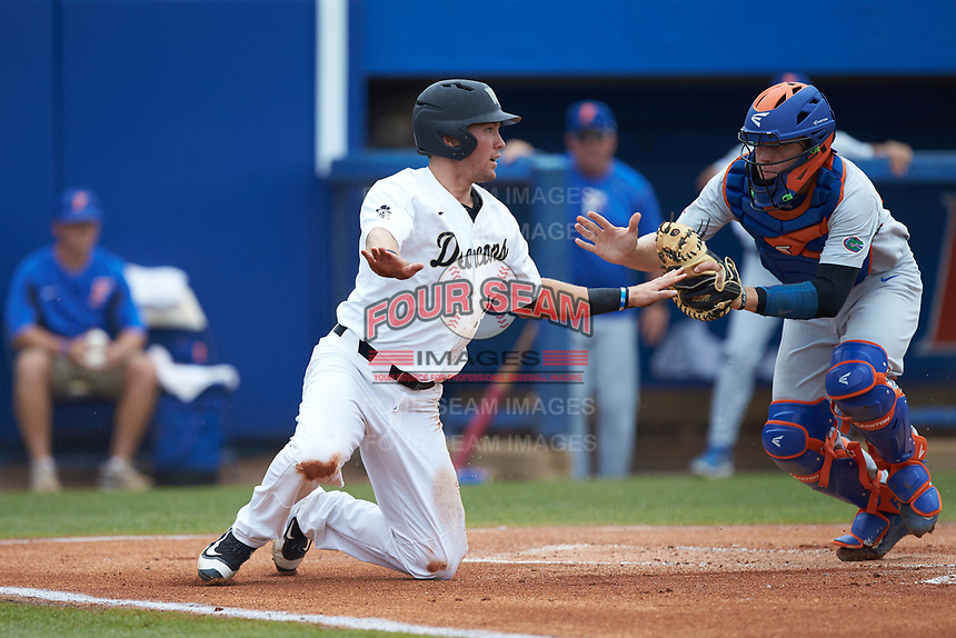 Keegan Maronpot (13) of the Wake Forest Demon Deacons signals safe as Florida Gators catcher JJ Schwarz (22) rushes to apply a tag during the completion of Game Two of the Gainesville Super Regional of the 2017 College World Series at Alfred McKethan Stadium at Perry Field on June 12, 2017 in Gainesville, Florida. The Demon Deacons walked off the Gators 8-6 in 11 innings. (Brian Westerholt/Four Seam Images)