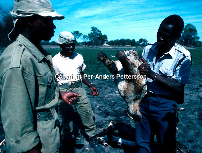COBOTSWA35049 Botswana. Unidentified officesr with a Botswana wildlife anti-poaching unit on patrol and looking for suspected poachers on November 12, 1996 in the Okavango Delta outside Maun, Botswana. The unit combats illegal poaching in the park, specially the poaching of elephants and rhino. An  international ban on the sale of ivory is supported by the country..©Per-Anders Pettersson/iAfrika Photos