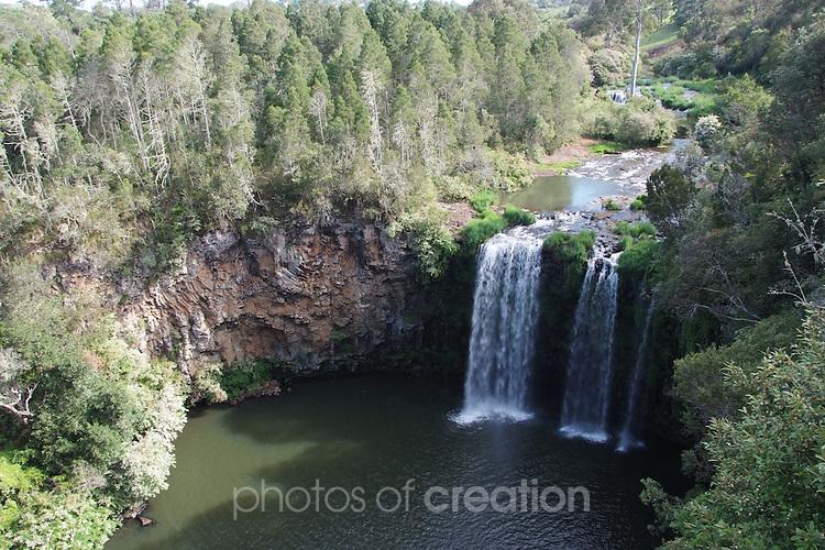 Dangar Falls , Dorrigo NSW