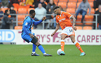Blackpool's Curtis Tilt under pressure from Gillingham's Brandon Hanlan<br /> <br /> Photographer Kevin Barnes/CameraSport<br /> <br /> The EFL Sky Bet League One - Blackpool v Gillingham - Saturday 4th May 2019 - Bloomfield Road - Blackpool<br /> <br /> World Copyright © 2019 CameraSport. All rights reserved. 43 Linden Ave. Countesthorpe. Leicester. England. LE8 5PG - Tel: +44 (0) 116 277 4147 - admin@camerasport.com - www.camerasport.com