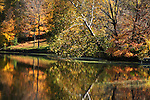 A Colorful Scene, Trees Along A Lake Shore In Autumn, Sharon Woods, Southwestern Ohio, USA