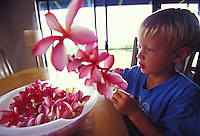 Boy making a pink plumeria lei at home