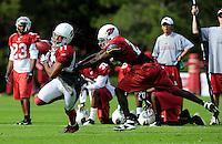 Jul 31, 2009; Flagstaff, AZ, USA; Arizona Cardinals wide receiver (11) Larry Fitzgerald is pushed to the ground by cornerback (25) Bryant McFadden during training camp on the campus of Northern Arizona University. Mandatory Credit: Mark J. Rebilas-