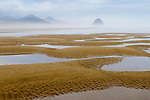 Pools of water are seen among the sandy beach at low tide with Haystack Rock in the background with morning mist in the air with hints of blue in the cloudy sky in Cannon Beach, OR. in this landscape rendition