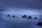 The Paddock Rocks. D'Urville Island. Marlborough Region. New Zealand.