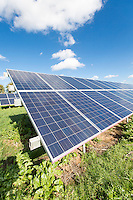Farm yard ground mounted solar panels - Lincolnshire, October