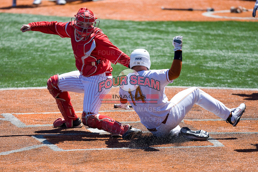 Nebraska Cornhusker catcher Patric Tolentino attempts to tag out Texas Lonhorn Kevin Lusson on Sunday March 21st, 2100 at UFCU Dish-Falk Field in Austin, Texas.  (Photo by Andrew Woolley / Four Seam Images)