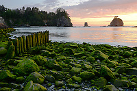 LaPush, Olympic National Park, Washington
