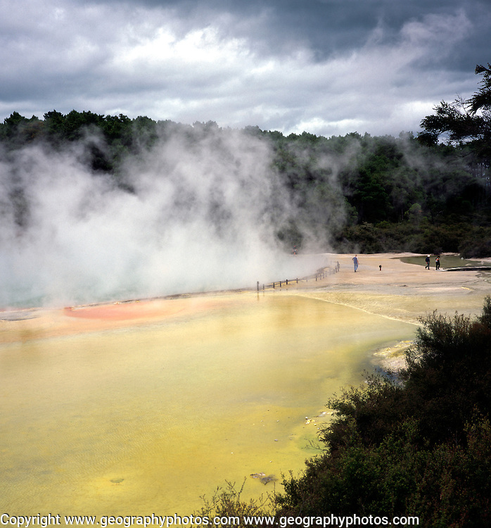 Hot spring steam and pool, Waiotapu, near Rotorua, north island, New Zealand