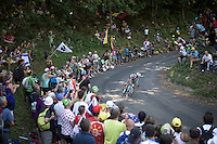 Alexis Vuillermoz (FRA/Ag2r-La Mondiale) descending the  Grand Colombier<br /> <br /> stage 15: Bourg-en-Bresse to Culoz (160km)<br /> 103rd Tour de France 2016