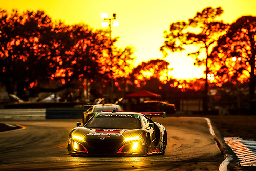 2017 IMSA WeatherTech SportsCar Championship<br /> Mobil 1 Twelve Hours of Sebring<br /> Sebring International Raceway, Sebring, FL USA<br /> Saturday 18 March 2017<br /> 86, Acura, Acura NSX, GTD, Oswaldo Negri Jr., Tom Dyer, Jeff Segal<br /> World Copyright: Michael L. Levitt/LAT Images<br /> ref: Digital Image levitt_seb_0317-30702