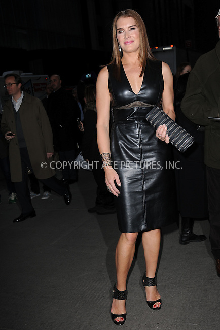 WWW.ACEPIXS.COM<br /> March 30, 2015 New York City<br /> <br /> Brooke Shields attending Woman in Gold Screening at the MoMa on March 30, 2015 in New York City. <br /> <br /> By Line: Kristin Callahan/ACE Pictures<br /> ACE Pictures, Inc.<br /> tel: 646 769 0430<br /> Email: info@acepixs.com<br /> www.acepixs.com